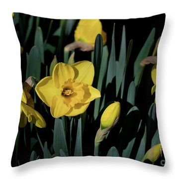 Camelot Daffodils Throw Pillow