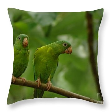 Orange -chinned Parakeets  Throw Pillow