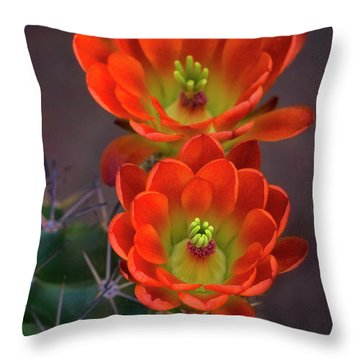 Throw Pillow featuring the photograph Orange Ya Beautiful  by Saija Lehtonen