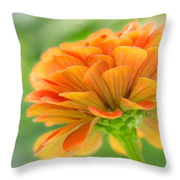Orange Zinnia  Throw Pillow