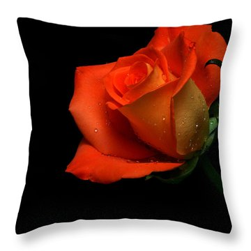 Orangette Throw Pillow