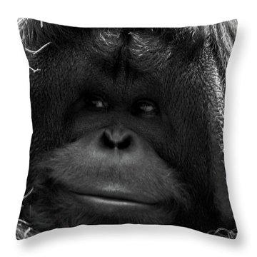 Orangutan Throw Pillow by Martin Newman