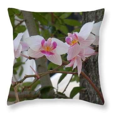 Orchid Bunch Throw Pillow by Maria Bonnier-Perez