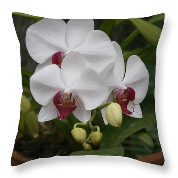 Throw Pillow featuring the photograph Orchid by Christian Zesewitz