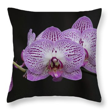 Orchids On Black Throw Pillow