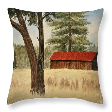 Oregon Barn Throw Pillow