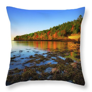 Otter Cove Throw Pillow