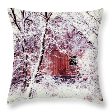 Our Barn  Throw Pillow