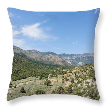 Out Back Throw Pillow