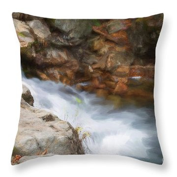 Painted Stream Throw Pillow