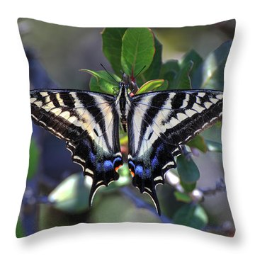 Pale Swallowtail Throw Pillow