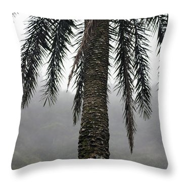 Palm, Koolau Trail, Oahu Throw Pillow
