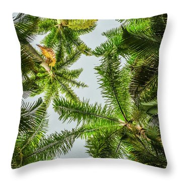 Palm Trees And Blue Sky Throw Pillow