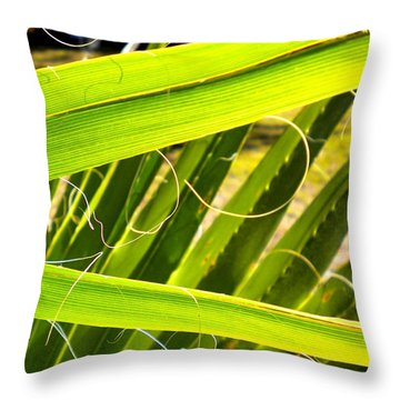 Throw Pillow featuring the painting Palmetto 3 by Renate Nadi Wesley