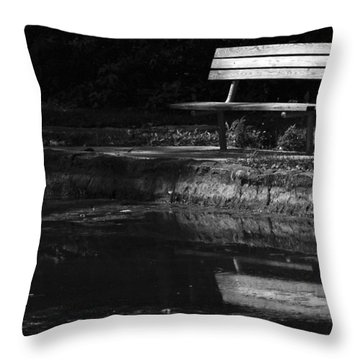 Throw Pillow featuring the photograph Park Bench Reflections by Wanda Brandon