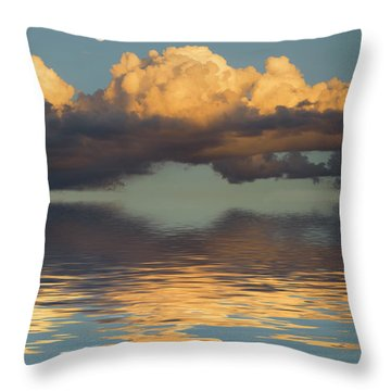 Passage Throw Pillow by Jerry McElroy