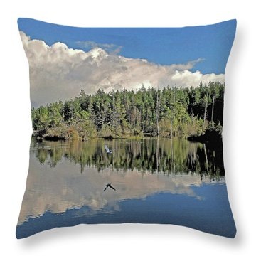 Pause And Reflect Throw Pillow