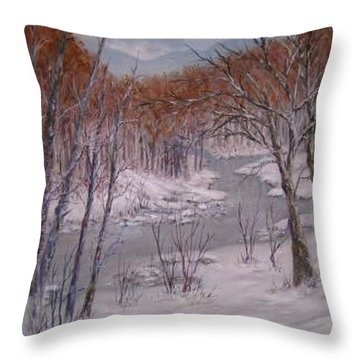 Peace And Quiet Throw Pillow by Ben Kiger