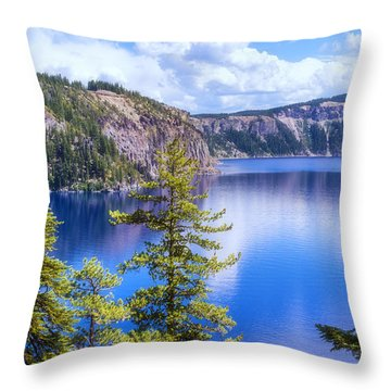 Wish I Was There Throw Pillow