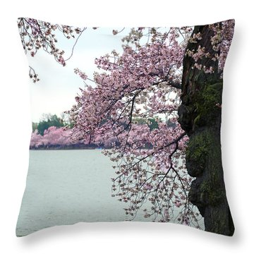 Peace Throw Pillow by Mitch Cat