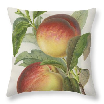 Peachy Throw Pillows