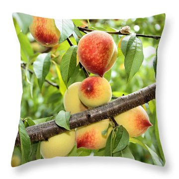 Throw Pillow featuring the photograph Peaches by Kristin Elmquist
