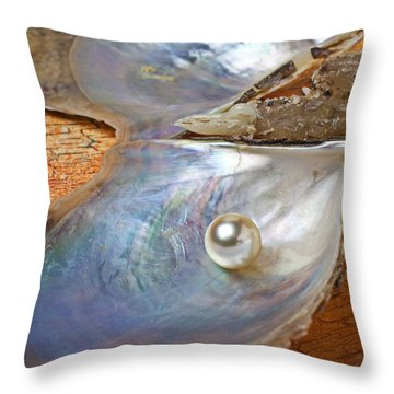 Oyster Shell Throw Pillows