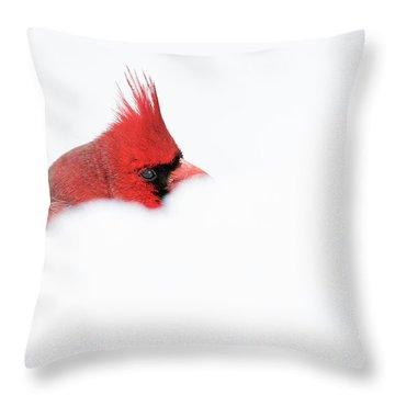 Throw Pillow featuring the photograph Peekaboo by Mircea Costina Photography