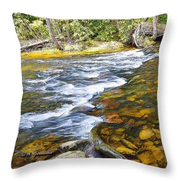 Pennsylvania Mountain Stream Throw Pillow