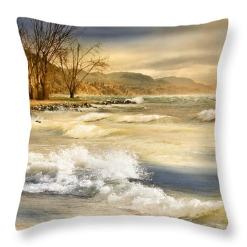 Perfect Storm Throw Pillow by John Poon