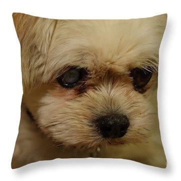 Pet Portrait - Annie Throw Pillow
