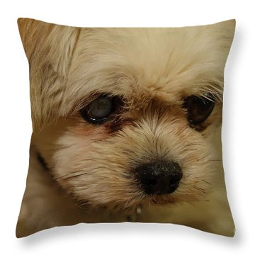 Pet Portrait - Annie Throw Pillow
