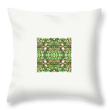 Pic13_coll2_14022018 Throw Pillow