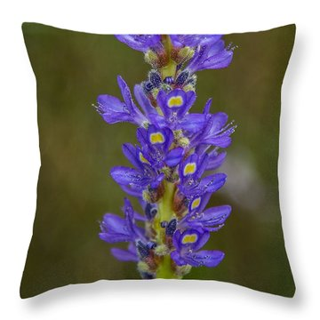 Pickerel Weed Throw Pillow by Christopher L Thomley