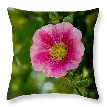 Mallow Family Throw Pillows