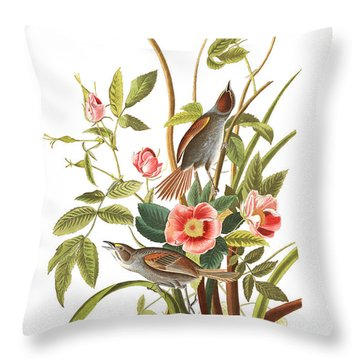 Throw Pillow featuring the photograph Pink Roses by Munir Alawi