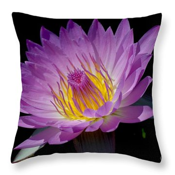 Pink Sapphire Throw Pillow