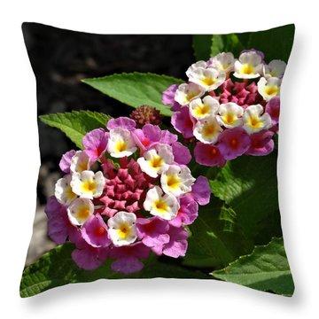 Pink-white Lantana Throw Pillow