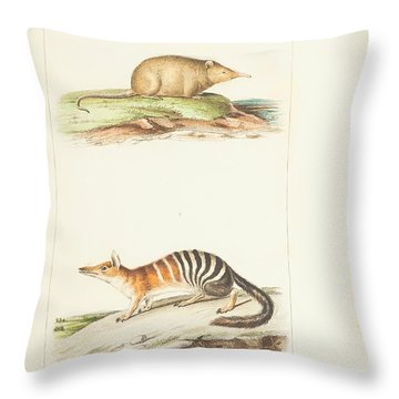 Planches  By Paul Gervais Throw Pillow