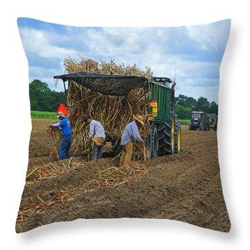 Planting Sugarcane Throw Pillow