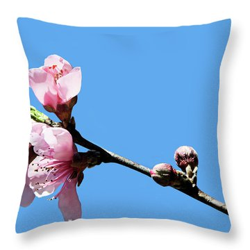 Throw Pillow featuring the photograph Plum Blossoms by Kristin Elmquist