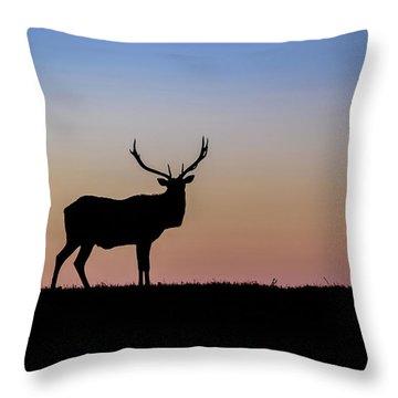 Point Reyes Elk Throw Pillow