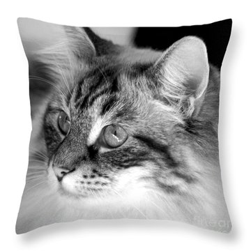 Polly Throw Pillow by Clayton Bruster
