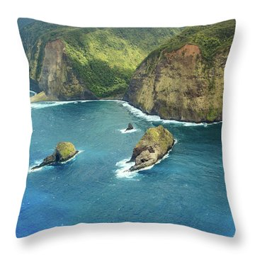 Pololu Point Throw Pillow