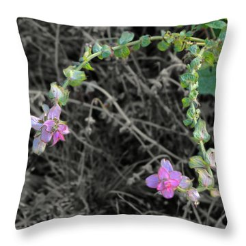 Throw Pillow featuring the photograph Pop Of Color  by Deborah  Crew-Johnson