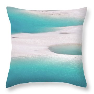 Porcelain Basin Throw Pillow