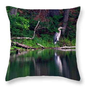 Posing Great Blue Heron  Throw Pillow