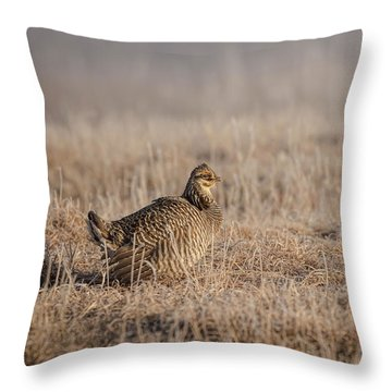 Throw Pillow featuring the photograph Prairie Chicken 8-2015 by Thomas Young