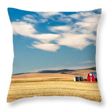 Prairie Red Throw Pillow