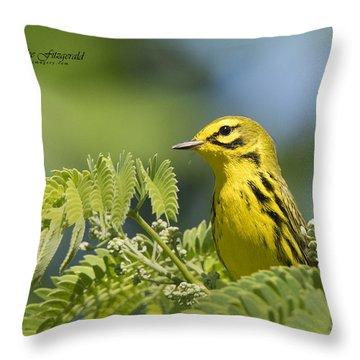 Prairie Warbler Throw Pillow